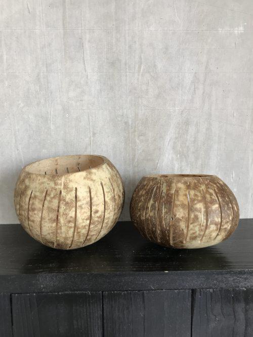 bakjes van kokosnoot met gaatjes