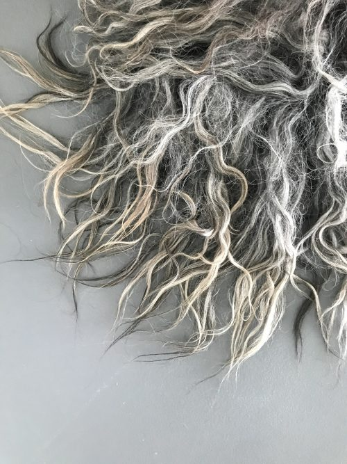 schapenvacht van vilt grijze krullen