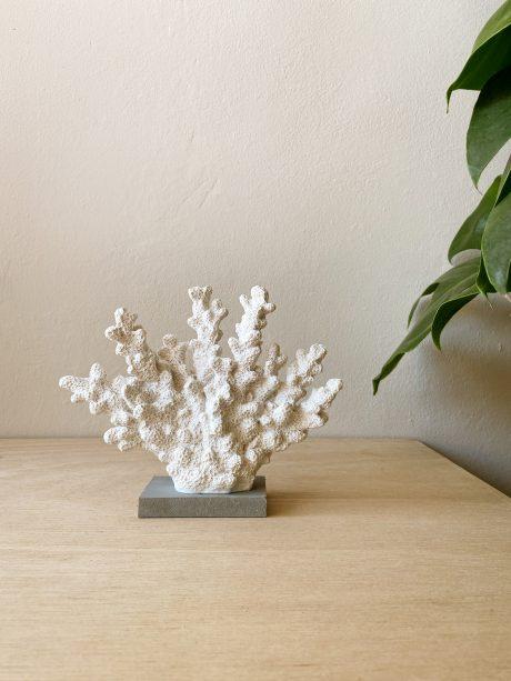 decoratie koraal wit